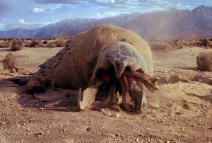 tremors-1990-graboid-2
