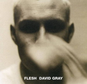 David-Gray---Flesh-1994-Front-Cover-21866