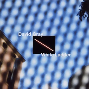 white-ladder-500325335de65